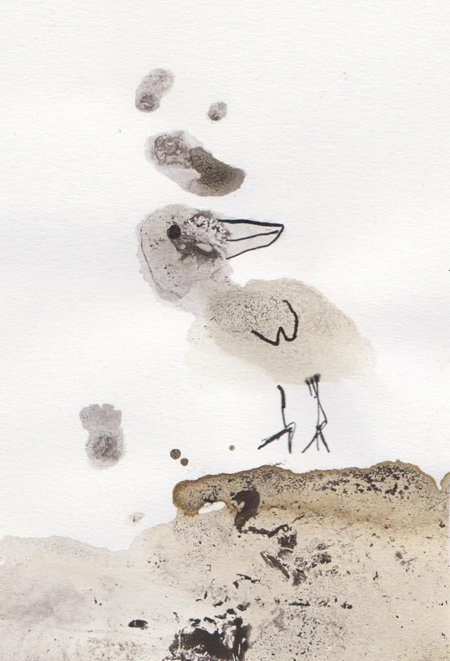 illustratie vogel met inkt