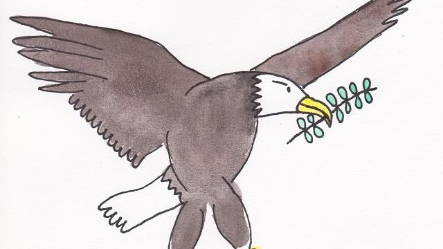illustration_peace_bird