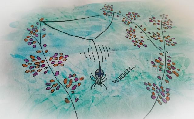 hoe begint een spin zijn web