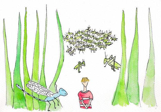 tekening De Kleine Johannes door Lisanne Lentink